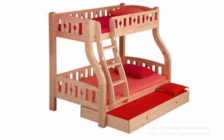 BL01 Bunk Bed with ergonomic ladder (Drawer,pull-out bed,bookshelf sold separately)