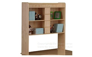 J006 Book Shelf